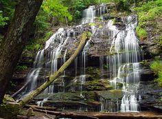 Station Cove Falls, South Carolina