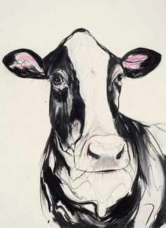 Georgina -Friesian Cow. Original charcoal, ink and pastel drawing on khadi 100% cotton rag paper. By Sophie Elinor Martin.