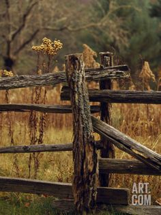 Dumbfounding Cool Tips: Fence Landscaping On A Budget dog fence thoughts.Fence For Backyard Driveways. Log Fence, Rustic Fence, Front Yard Fence, Farm Fence, Fence Gate, Fenced In Yard, Horse Fence, Brick Fence, Concrete Fence