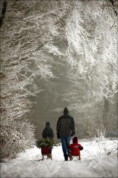 Splendid Sass: PINTEREST AT CHRISTMASTIME