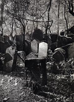 Josef SUDEK :: Vieux Cimetière Juif, 1928