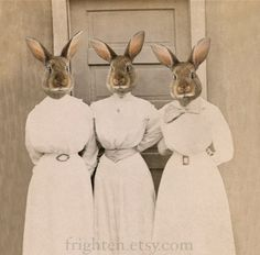 Easter Rabbit Art Print, The Sisters Bunn, Altered Photograph of Three Ladies. $25.00, via Etsy.