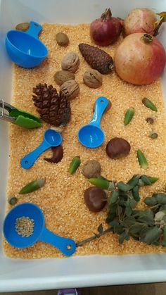 LOS PEQUES DEL PICASSO: Bandejas del otoño Fall Sensory Bin, Sensory Bins, Sensory Activities, Preschool Activities, Autumn Activities For Kids, Easy Crafts For Kids, Tuff Tray, Creative Curriculum, Holidays With Kids