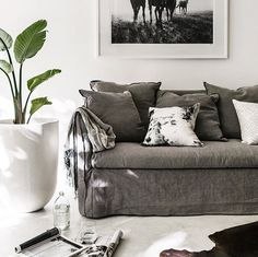 Relaxed living....  @indiehomecollective Vittoria slipcover sofa now in store. #indieliving #indiehomecollective