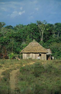 traditional Macuxi tribal hut, Amazon rainforest near Boavista, Brazil