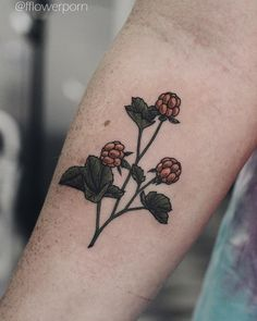 "1,481 Likes, 15 Comments - Olga Nekrasova (@fflowerporn) on Instagram: ""Cloudberry is looove#tattoo #tattoos #ink #inked #tattooed #tattooist #design #tattooedgirl #art…"""