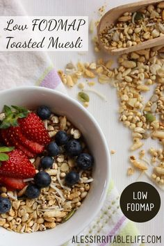 Muesli is a convenient and high fibre breakfast, but store-bought muesli is normally high FODMAP. But it's very easy to make your own low FODMAP muesli. Fodmap Breakfast, Healthy Breakfast Recipes, Healthy Recipes, Fodmap Diet, Low Fodmap, Fodmap Foods, High Fiber Breakfast, Muesli Recipe, Fructose Free