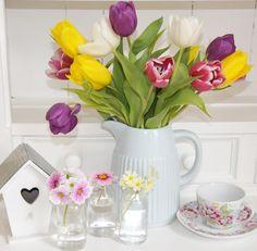 Tulips.  Helen Phillips