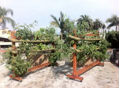 VEG in Action | Vertical Earth Gardens