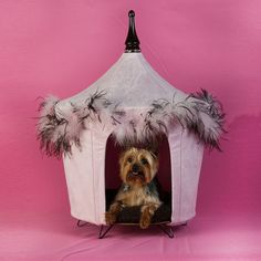 Posh And Pink Pet Tent, $140, now featured on Fab. The Posh And Pink design is fashioned from micro-suede with a feather boa trim. It also includes a rhinestone-encrusted wood spire and a brown sleeping pillow.