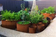 Container Gardening – How Do You Pick Your Planters?