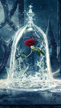 Beauty and the Beast is almost here! Get your devices ready with these enchanting phone, tablet, and computer Beauty and the Beast wallpapers. disney Add Some Magic To Your Devices With These Beauty and the Beast Wallpapers Rose Wallpaper, Tumblr Wallpaper, Galaxy Wallpaper, Wallpaper Backgrounds, Trendy Wallpaper, Beautiful Wallpaper, Screen Wallpaper, Wallpaper Desktop, Computer Wallpaper