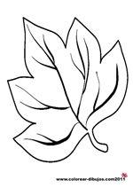 dibujos de hojas de arbol para colorear y para imprimir