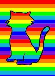 Afbeeldingsresultaat voor regenboog vouwen van papier