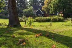 Wim Ahne was gisteren bij Museumboerderij Wendezoele in Delden en maakte daar deze mooie foto.