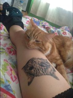 A tattoo in honor of a very sweet cat.