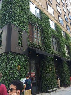 AgroSci NYC greenwall