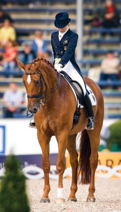 9 Tips for a Winning Dressage Test. Top judges Lilo Fore, Anne Gribbons and Hilda Gurney weigh in.
