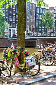 The Netherlands - Our favorite photos for 2014 www.europescalling.com