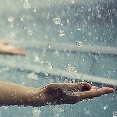 Summer Rain, Winter Rain, Dps For Girls, Rainy Days, Background Images, Wallpaper Backgrounds, Mindfulness, Indie, Gifs