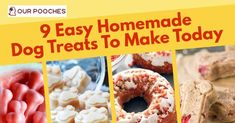 9 easy homemade dog treats to make today for all seasons from chicken to donuts, these treats surely taste as good as they look
