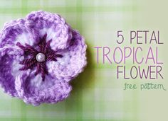 Taste of the Islands Tropical Flower