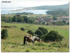 Etapa 13: Santander - Santillana del Mar. De camino a Cudón. Camino del Norte. #Cantabria #Spain #Travel
