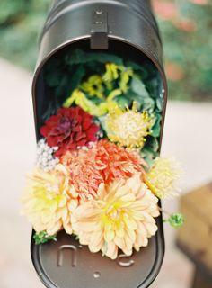 A beautiful bouquet for fall. Flower Power, My Flower, Wedding Mailbox, Flower Decorations, Wedding Decorations, Wedding Ideas, Flower Delivery, Beautiful Flowers, Beautiful Life