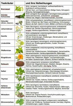 Heilkräuter und ihre Wirkung