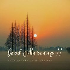 Good Morning Beautiful Pictures, Good Morning Nature, Good Morning Image Quotes, Morning Quotes Images, Good Morning Images Flowers, Good Morning Images Hd, Good Morning Greetings, Good Morning Good Night, Morning Pictures
