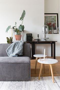 Living room: Grey couch, wooden floors, pot plants, white circular coffee tables and white patterned rug