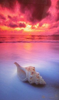Peter Lik capturing one of nature's gifts to mankind.  Enjoy!  Behold!  Appreciate!