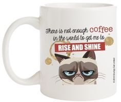 Ganz Grumpy Cat Coffee Mug, There is Not Enough Coffee in The World to Get Me to Rise and Shine Ganz http://www.amazon.com/dp/B00HW21008/ref=cm_sw_r_pi_dp_p8.zub1AV9PD6
