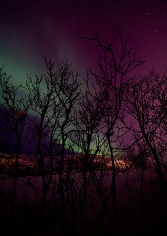 aurora.I want to go see this place one day.Please check out my website thanks. www.photopix.co.nz