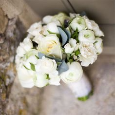 Minster Flowers created Re's bridal bouquet and the centrepieces for the reception. Re opted for a stunning hand tied bouquet of ivory roses, white ranculus and white spray roses, set off by green china grass and eucalyptus foliage. The bridesmaids carried posies of white ranculus, and Re opted to decorate her bouquet and Jon's buttonhole with tiny mother of pearl, heart shaped buttons.The centrepieces consisted of hand tied bunches of white, cream and lime green flowers such as roses, ...