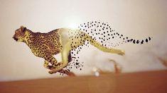 Disintegration Photo Effects Tutorial in #Photoshop  #digitalart #surreal #surrealism #NyelenehArt #conceptualPhotography #fineartphotogrphy #learningphotoshop #photoshoptutorials
