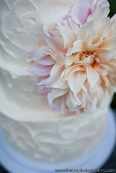 Close up of textured buttercream by Sweet & Saucy Bake Shop
