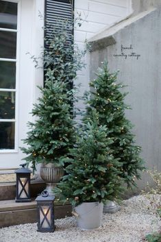 Potted trees may be short in stature but they are definitely high on impact. Find out more on how to decorate your home with these beautiful pieces. #christmaslights #outdoorchristmaslights Cottage Christmas, Noel Christmas, Christmas Fashion, Winter Christmas, Porch Christmas Tree, Christmas Movies, Front Porch Ideas For Christmas, Christmas 2019, Christmas Music
