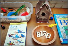 Bird Themed Sensory Bin from My Nearest and Dearest