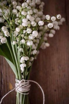 Bunch of lily  of The Valley flowers tied with string