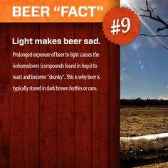 """Beer """"Fact"""" #20.     www.swagbrewery.com"""