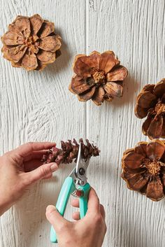 How to Make a Rainbow Pinecone Flower Wreath That's Perfect for Summer Making pinecone wreath flowers is surprisingly easy, as long as you have heavy-duty scissors. To make, cut each pinecone into one-inch sections to create flat flower layers. Nature Crafts, Fall Crafts, Crafts To Make, Christmas Crafts, Arts And Crafts, Pine Cone Crafts For Kids, Pinecone Crafts Kids, Tree Crafts, Diy Projects To Try