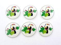 Toucan Buttons 6 Handmade Buttons  Tropical Bird by buttonsbyrobin, $10.50