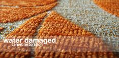 Safe & Affordable Flood Damage Carpet Restoration in Melbourne #carpetrestoration #flooddamagecarpetrestoration #carpetrestorationmelbourne #carpetrepair #freshcarpetrestoration