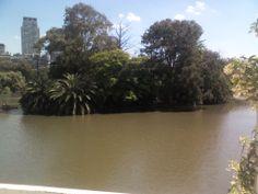 Un aisla en del medio de la Cuidad de Buenos Aires,del Rosedal de Palermo
