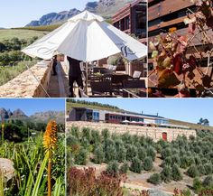 This was our second Hidden Valley Wedding. It certainly is one of the most beautiful Cape wedding venues we've been privileged to photograph a wedding at. Expressions Photography, Wedding Memorial, This Is Us, Wedding Venues, Most Beautiful, Patio, Amazing, Outdoor Decor, Wedding Reception Venues