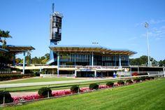 Sunshine Coast Turf Club - watch the horse races Sunday arvo Australia Trip, Coast Australia, Sunshine Coast, Horse Racing, Sunday, Club, Watch, Country, Building