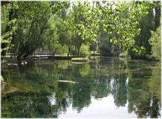 Fonti del Clitunno - The water sources of the river, springing from underground, form a small lake with lots of tiny islands and surrounded by soft shores enriched by poplars and weeping willow trees that reflect themselves in water. #Umbria