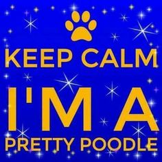Royal Blue And Gold, Blue Gold, Divine Nine, Sigma Gamma Rho, Sister Friends, Sorority Life, Sorority And Fraternity, Love Blue