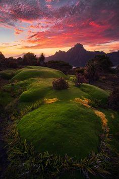 ~~Blazing Inferno | sunrise, South-West National Park, Tasmania, Australia | by Dylan Gehlken~~